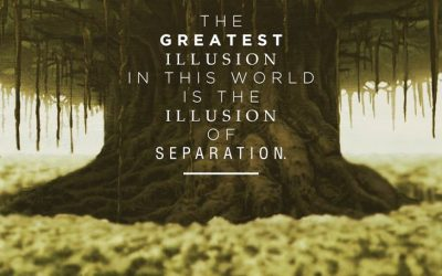 The Illusion Of Separation